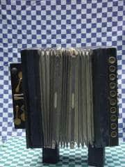 accordeon-(4)