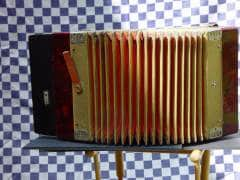 accordeon-(2)
